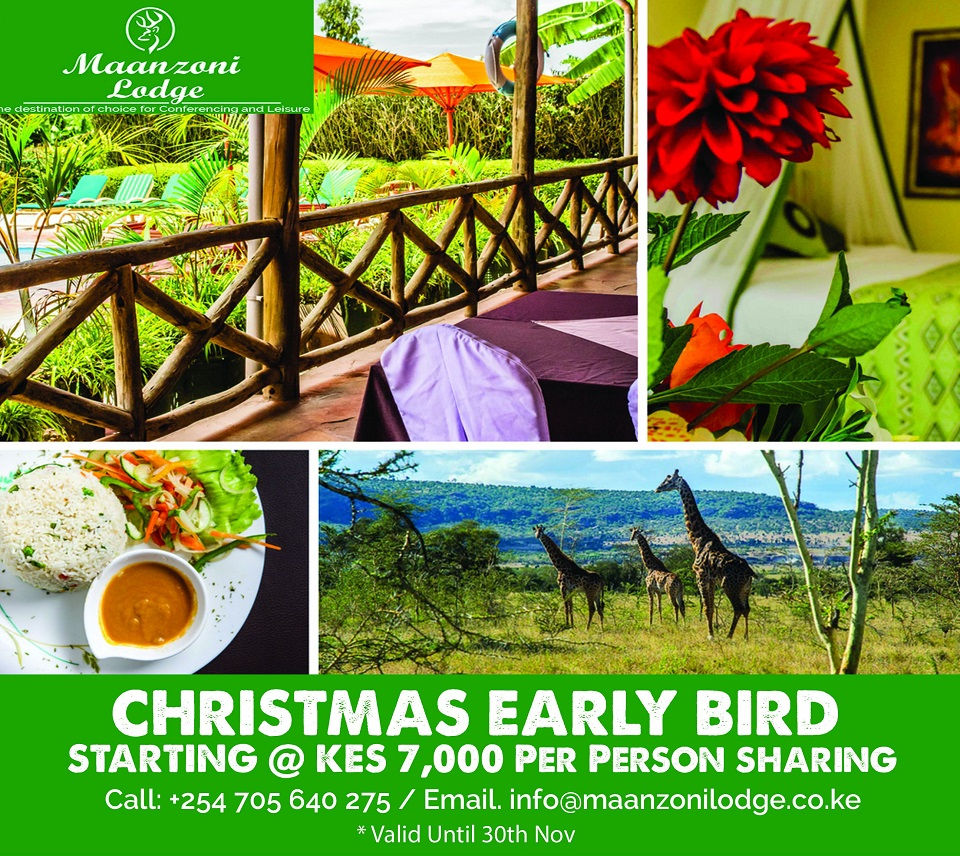CHRISTMAS EARLY-BIRD OFFER